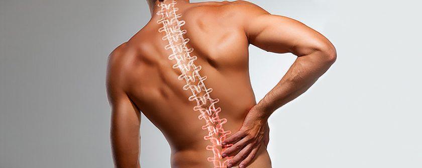 Treatment for Back and Neck Pain Santa Rosa